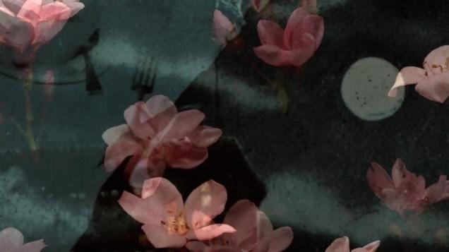 janie_geiser_flowers-frame_grab-02